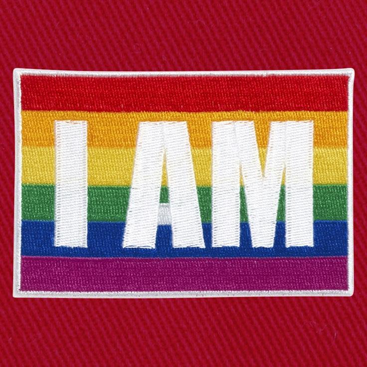 Badge I Am Gay - 129