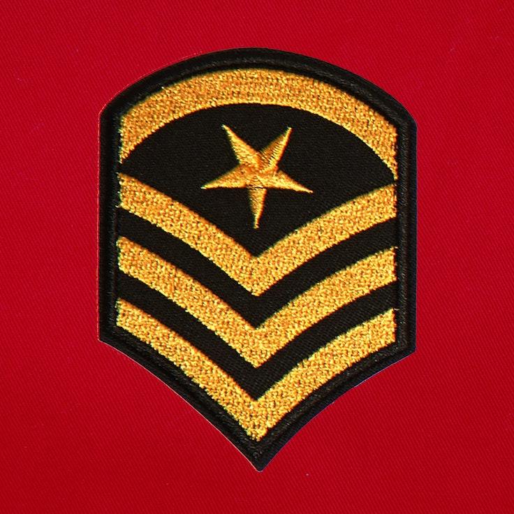 Badge Officer - 222